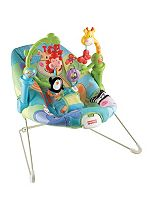 Fisher Price Discover 'n Grow Baby Bouncer
