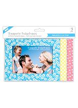 Shot 2 Go Spring Fridge Photo Frames 4 x 6- x 3 Pack