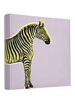 Anker Zebra Slip- In Photo Album 6 x 4- 140 photos