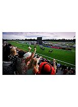Day at the Races For Two