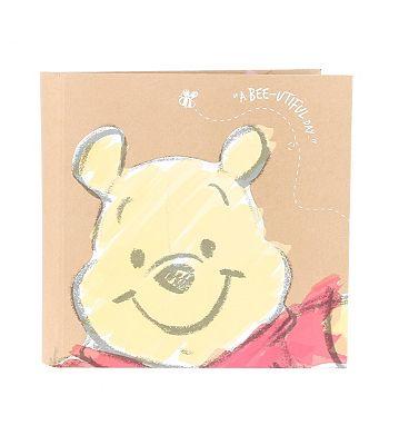 Winnie The Pooh Slip-In Photo Album 6x4- 200 photos