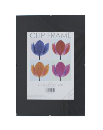 Glass Clip Photo Frame A4