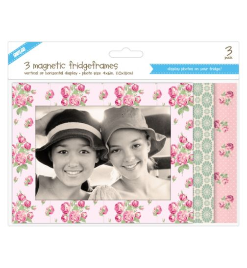Shot 2 Go Vintage Floral Fridge Photo Frames 4 x 6- 3 Pack