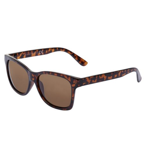 Boots Mens Brown Wayfarer Sunglasses
