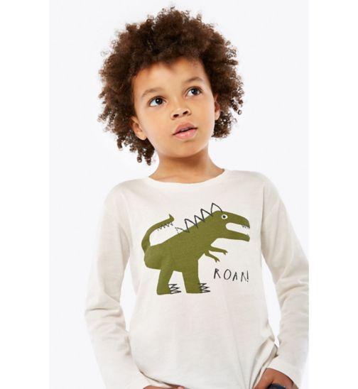 Boys Long Sleeve Dino Top