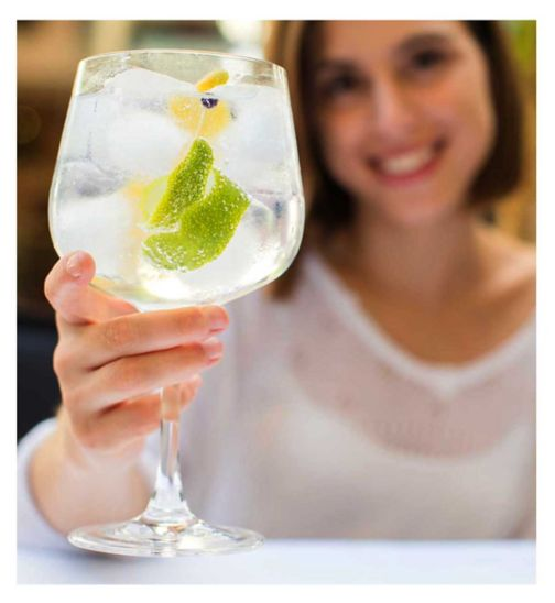 Activity Superstore Two Tickets to the Gin to my Tonic Festival